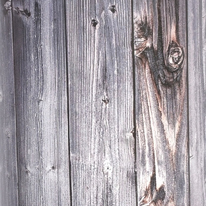 Wood rustic planks